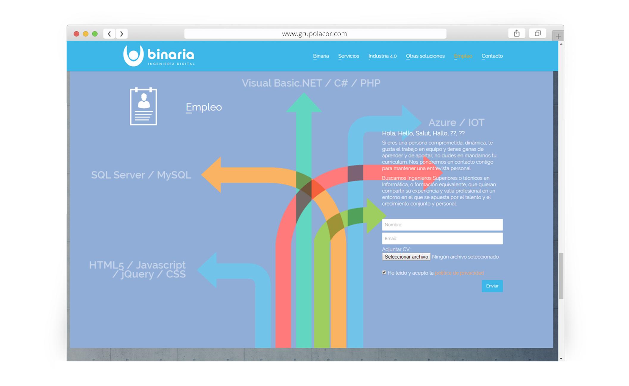 Proyectos Sitio Web Para Soluciones Binaria Zaragoza