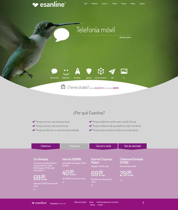 Captura: Imagen corporativa, aplicaciones y sitio web para Esanline